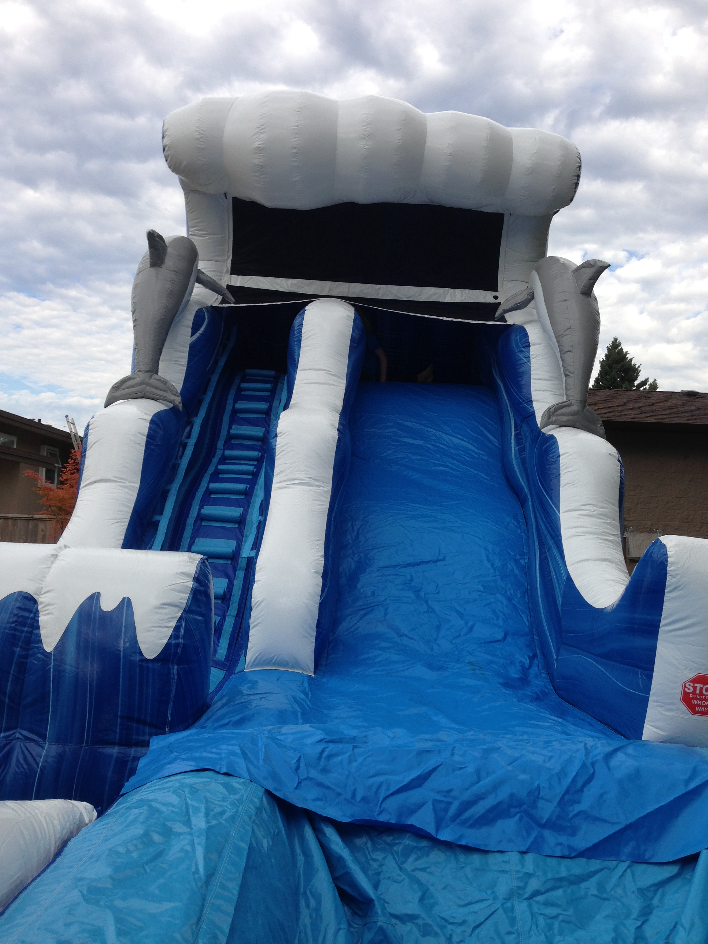 Front View of Dolphin Wave Waterslide