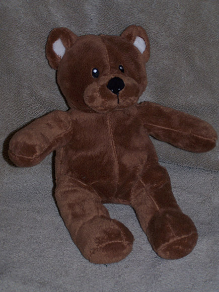 Jr. Brown Bear - $12