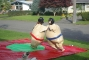 Youth Sumo Suits