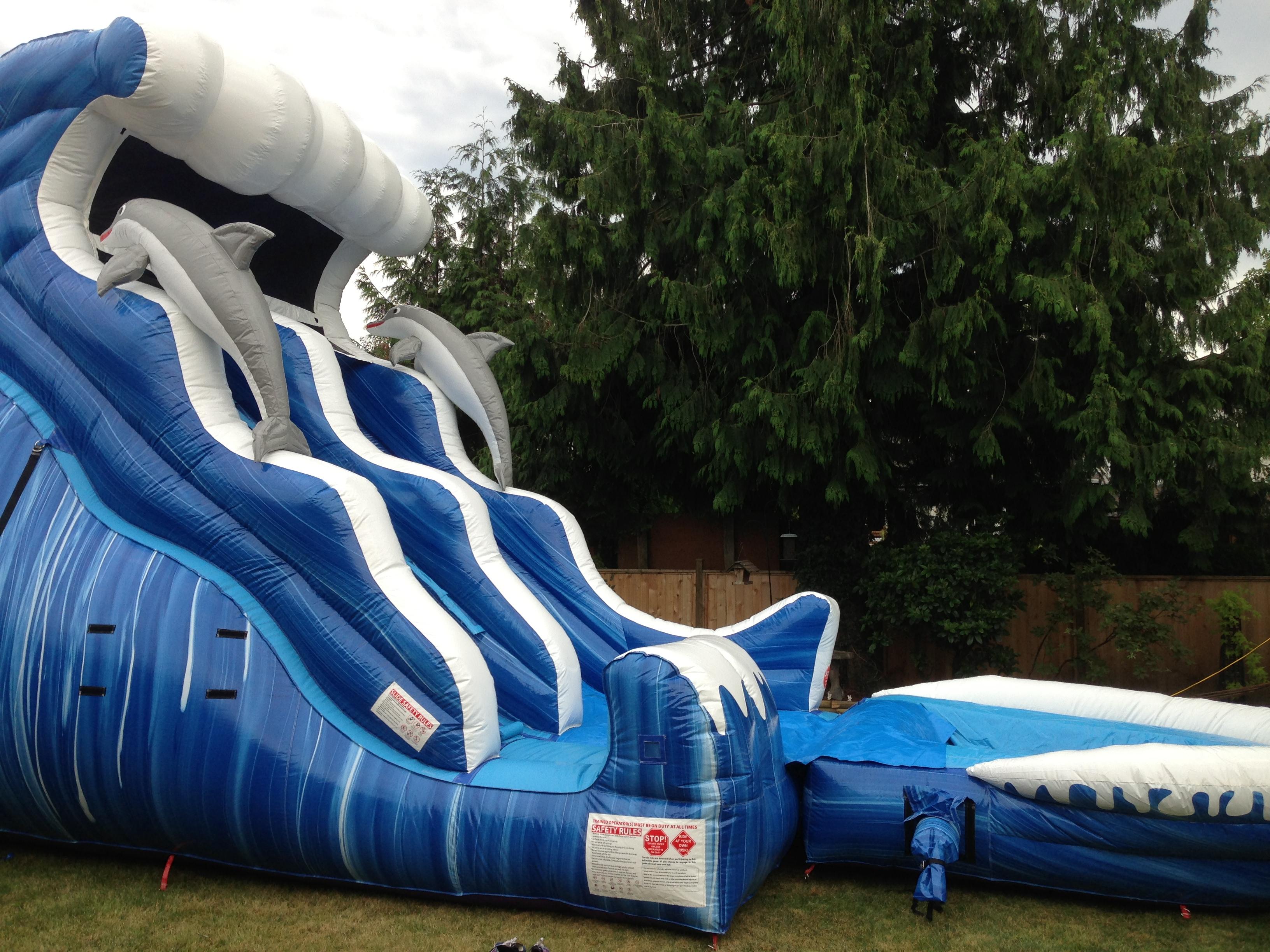 Dolphin Wave Water Slide   Bouncy Castles & Slides   Fraser Valley